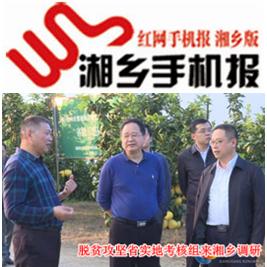 11月18日湘乡手机报