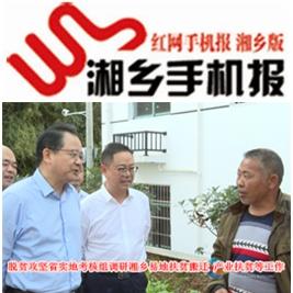 11月19日湘乡手机报