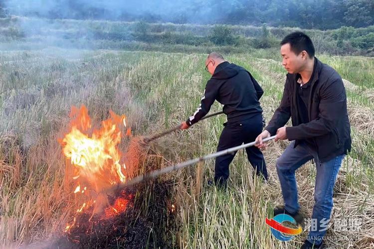 【碧水蓝天 生态湘乡】[东郊乡]注意!焚烧秸杆最高可罚2000元