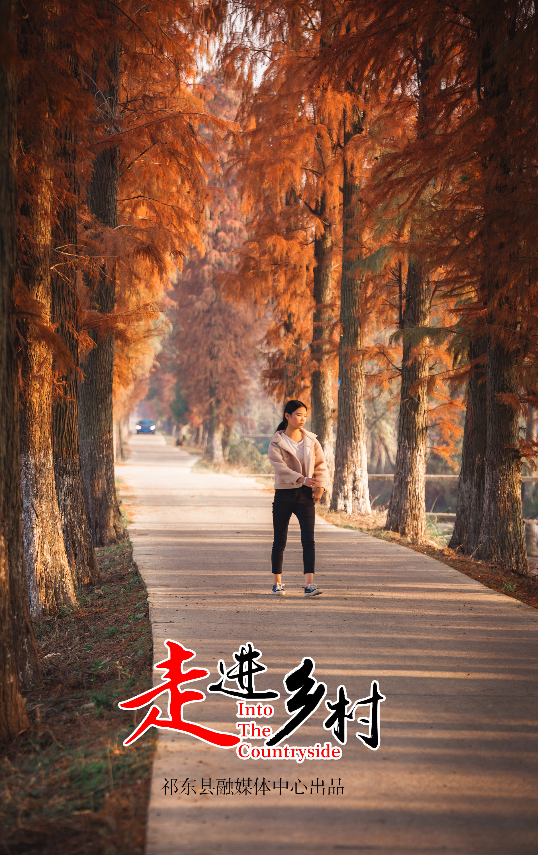 摄影:李文军