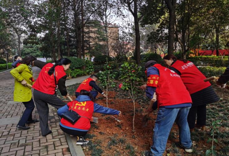党群义务植树 助力网格环境提质