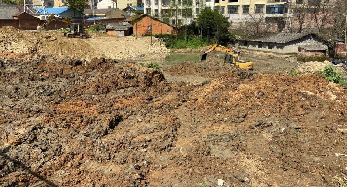 整治污水坑 增添新綠地