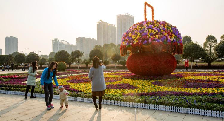 2020年 发现祁阳之美摄影大赛 优秀奖作品展示