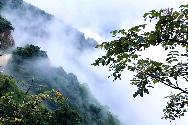 大美双牌:阳明山上云山雾海似仙境