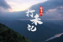 视频 | 云台山打禾记
