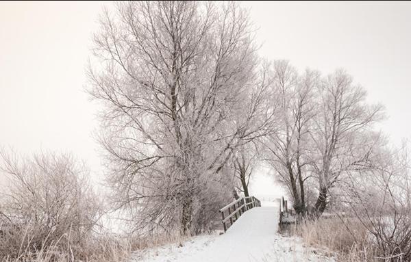 冬日.png