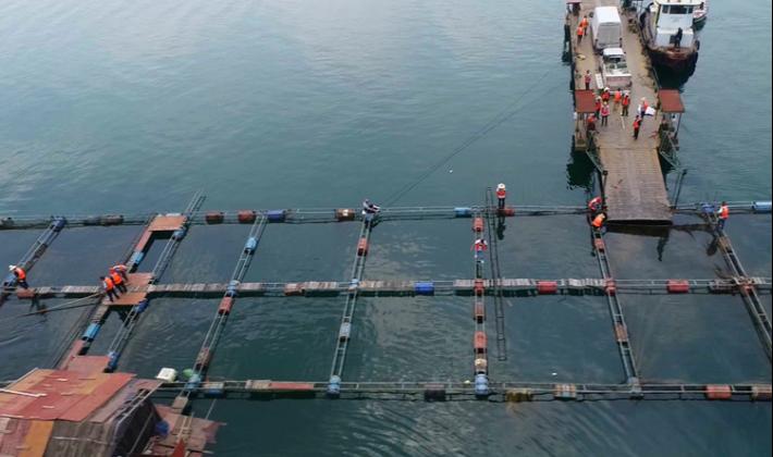 """资兴:""""东江清波""""行动护航水生态环境保护"""