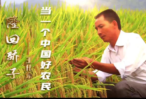 隆回骄子① | 王化永:当一个中国好农民