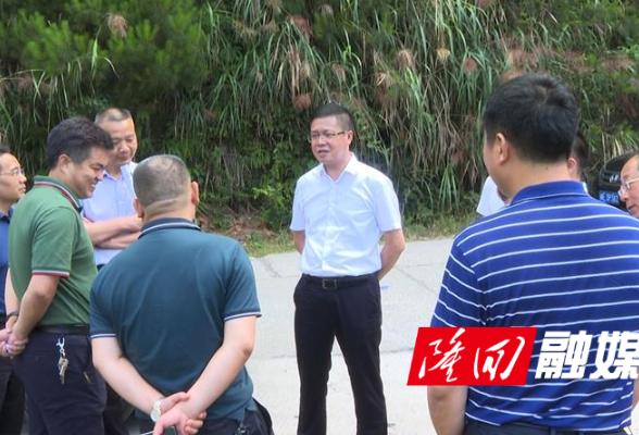 """杨韶辉调研""""街道三清农家三化""""及新新高速公路等工程建设前期工作"""