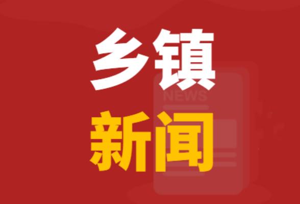 七江镇扎实做好气象和地质灾害预警工作