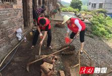 【三大行动】县委组织部到桃花坪街道竹塘村开展志愿卫生清扫整治行动