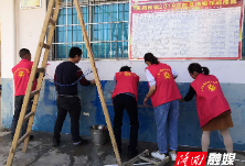 【三大行动】三阁司镇青年人才党支部开展清理牛皮癣志愿服务活动