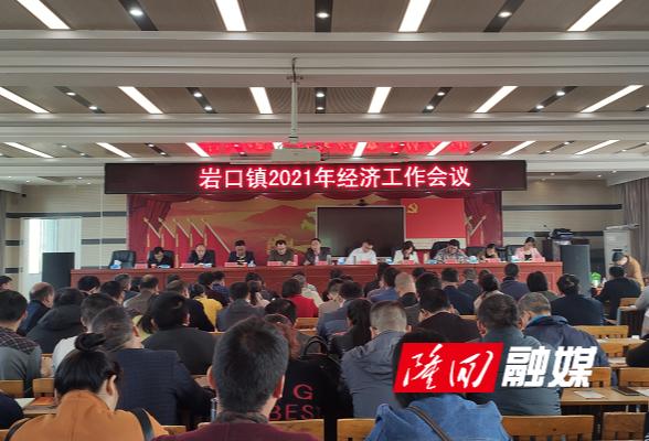 岩口镇召开2021年经济工作会议