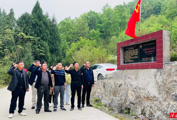 荷香桥镇党委理论中心组开展党史学习教育专题学习