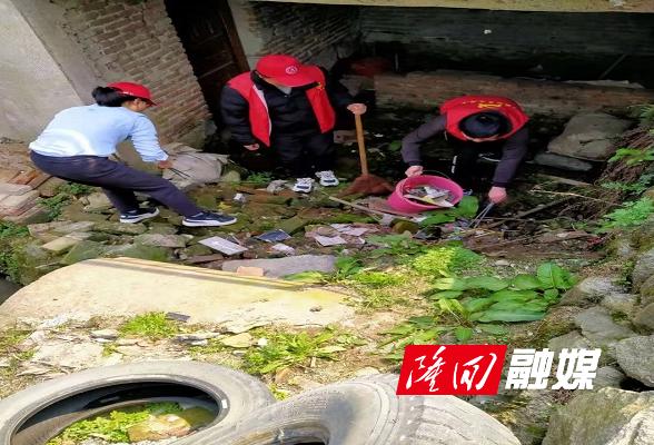 小沙江镇组织开展卫生清扫志愿服务活动