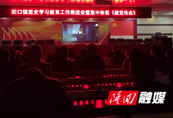 岩口镇组织观看红色电影《建党伟业》