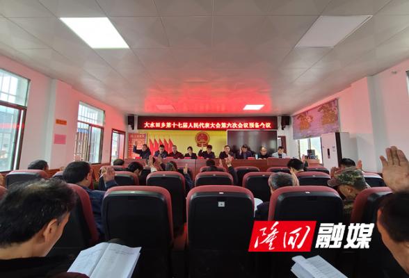 大水田乡第十七届人民代表大会第六次会议召开