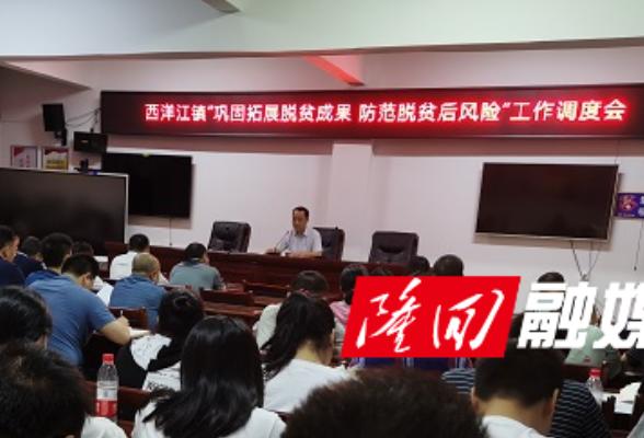 """西洋江镇召开""""巩固拓展脱贫成果、防范脱贫后风险""""调度会"""