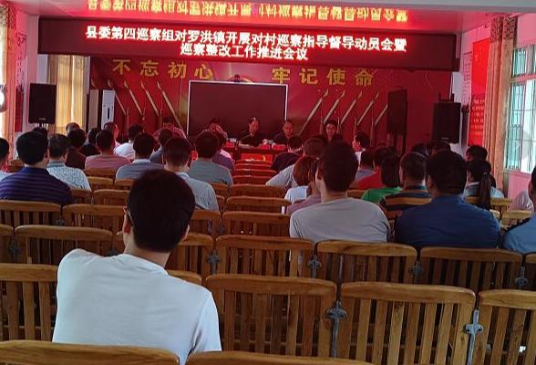 罗洪镇召开村级巡查动员会暨巡察整改工作推进会议