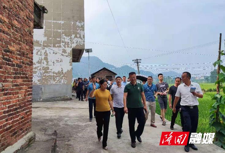 隆回县人居环境整治现场观摩会在南岳庙镇召开