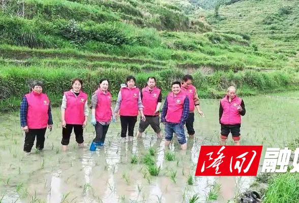 罗洪镇江塘村把党史学习教育开展到田间地里