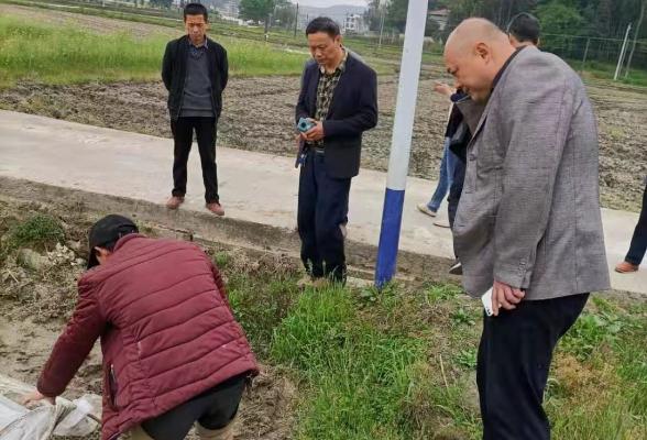 县总工会到高平镇江未村开展早稻生产督导