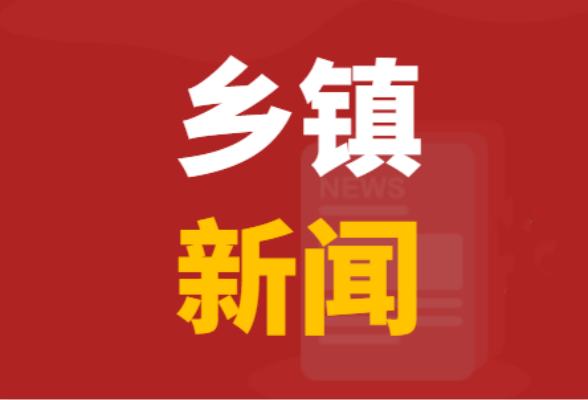 西洋江镇召开2021年政府工作报告征求意见会