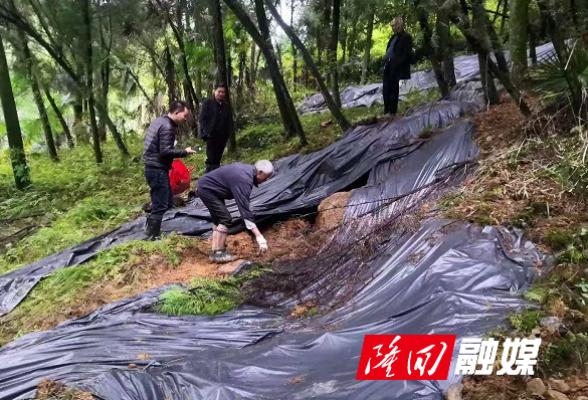 西洋江镇加强地质灾害隐患排查