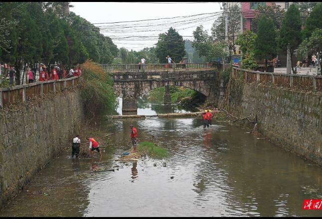 荷香桥镇开展净化、美化、亮化人居环境志愿活动