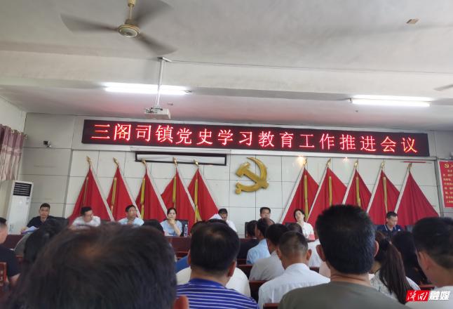 三阁司镇召开党史学习教育工作推进会议