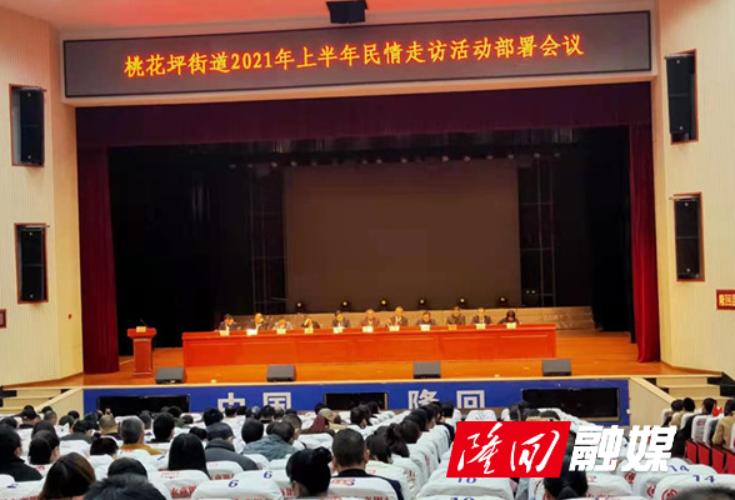 桃花坪街道组织召开2021年上半年民调工作动员部署大会