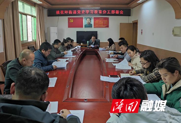 桃花坪街道召开党史学习教育分工部署会议