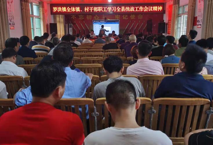 隆回县罗洪镇传达学习全县统战工作会议精神