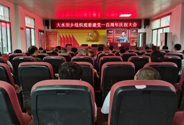 隆回县大水田乡组织干部职工集中收看中国共产党成立100周年大会