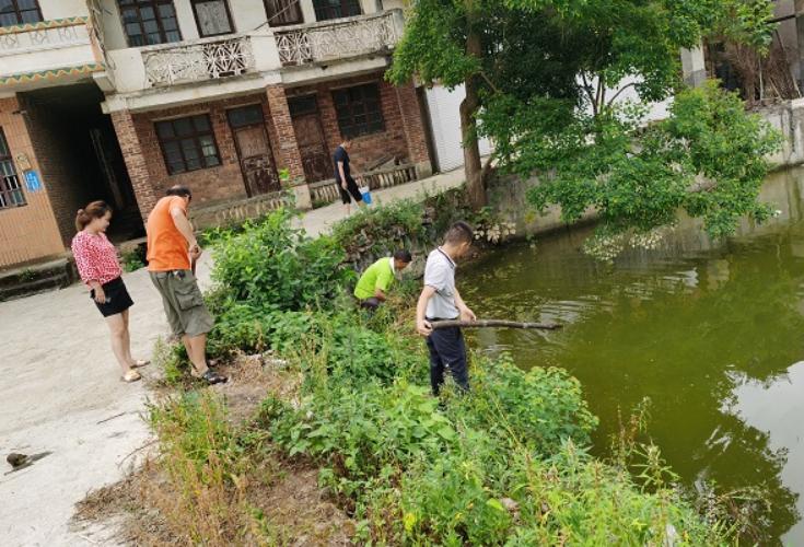 西洋江镇:全民参与人居环境整治