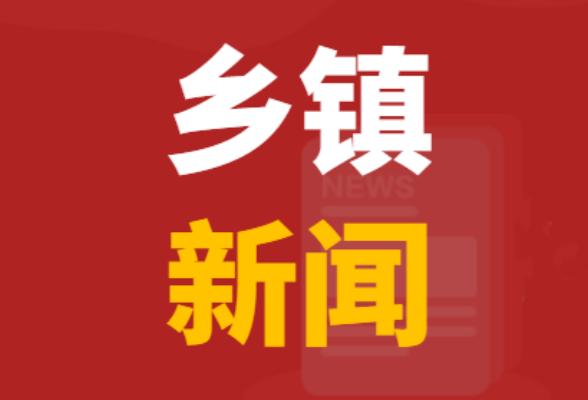 山界回族乡开展春节前安全生产大排查