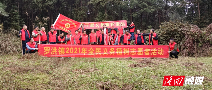 罗洪镇组织开展义务植树活动