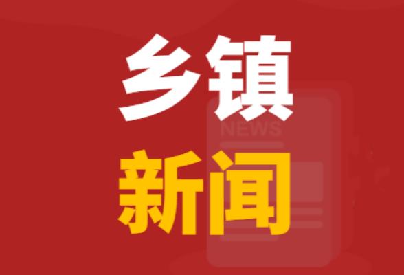 西洋江镇商会召开第四届会员大会暨换届选举会议