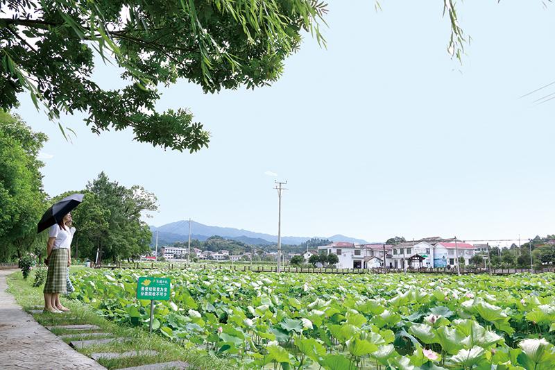 10版时政镇村-3.jpg