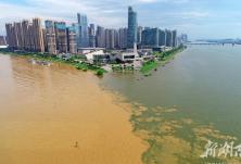 暴雨洪峰冲在前——湖南干部群众奋战防汛抢险一线