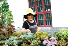 农活间隙忙种花,造出一个花园庭院