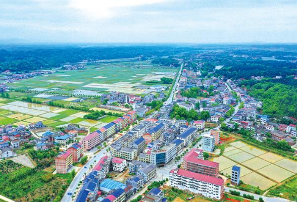 浏阳龙伏镇:一个农业大镇的转型升级