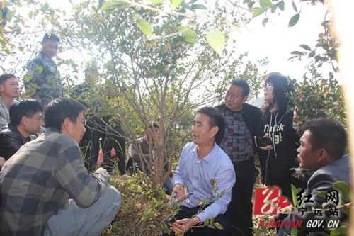 宁远召开2020年油茶优质高产栽培实用技术培训会议2_副本500.jpg