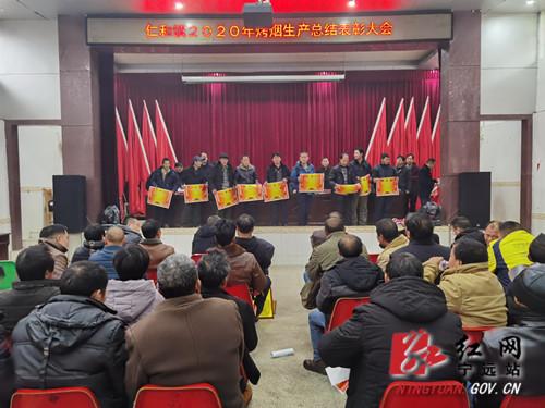 宁远仁和镇:烤烟产业发展再擂战鼓_副本500.jpg