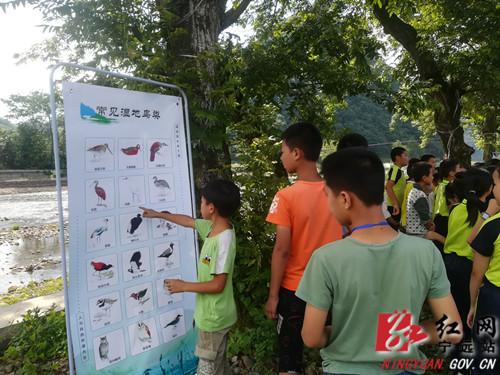 宁远:湿地自然环境教育科普活动上线啦_副本500.jpg
