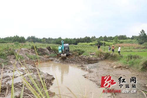 【我为群众办实事】宁远:向地要水抢插晚稻 及时雨缓解旱情1_副本500.jpg