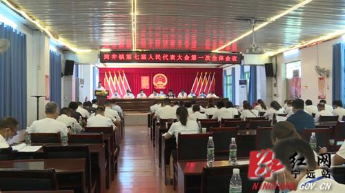 宁远湾井镇召开第七届人民代表大会第一次会议1_副本500.jpg