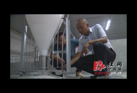 宁远:持续助力中小微企业 赋能生猪产业转型升级