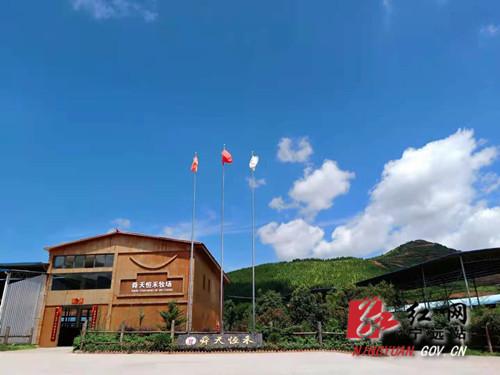 """喜报!宁远县水市镇获评""""2020年省级农业产业强镇""""称号_副本500.jpg"""