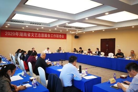 湖南省文艺志愿服务工作联络会纪要